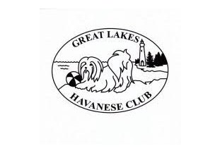 Carneys Havanese Haven, Affiliated with the Great Lakes Havanese Club